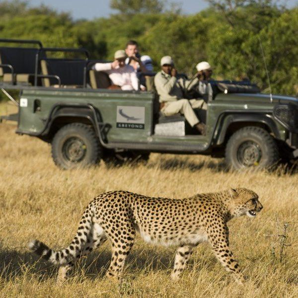 Karibu Kenya Safari