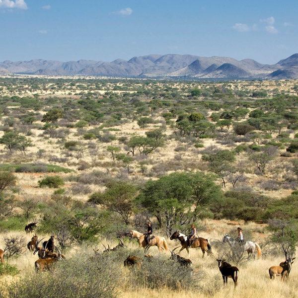 Nairobi National Park, Chyulu Hills & Masai Mara