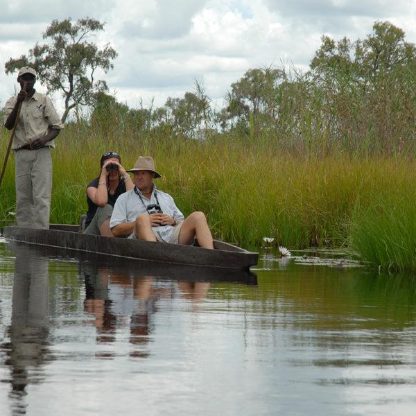 Awe-inspiring Views And Wildlife Experiences